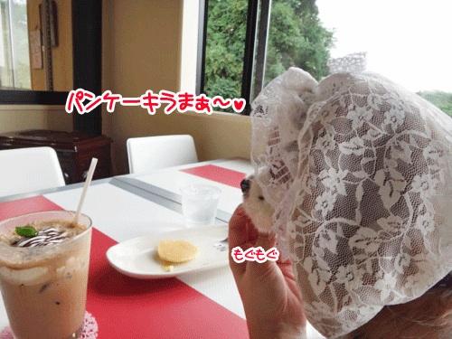 ニコかふぇ4の1
