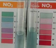 ネックス水質