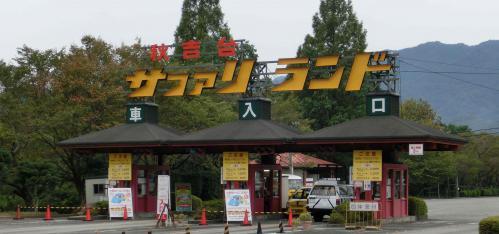 秋吉台サファリ