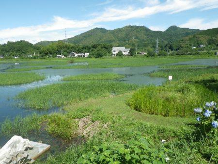 2012 6月22日 日高調整池