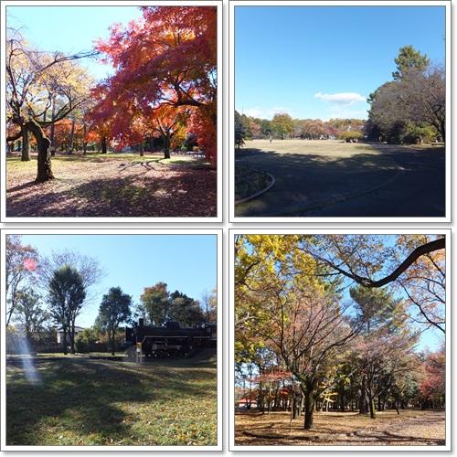 1小金井公園