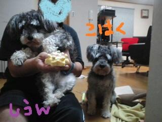 1moblog_a870da98-2.jpg