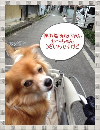 IMG_1389.jpg
