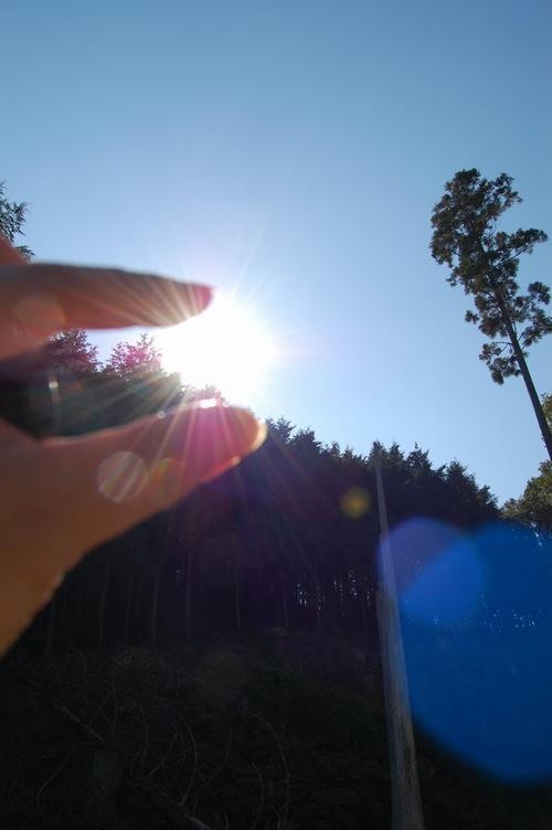嵐山で太陽捕まえた