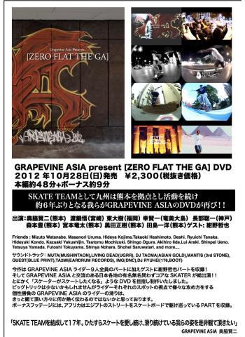 [ZERO FLAT THE GA ]DVDオーダーシート_small