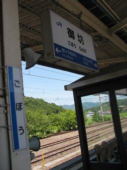 2013-0818_gobou01.jpg