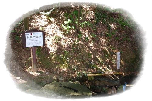 松尾寺霊泉