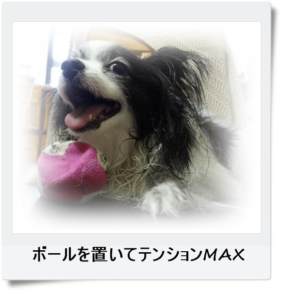 テンションMAX