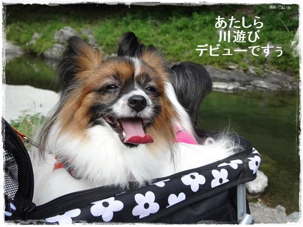 川遊びデビュー
