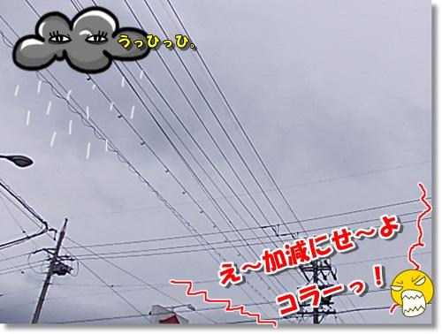DSCN9447.jpg