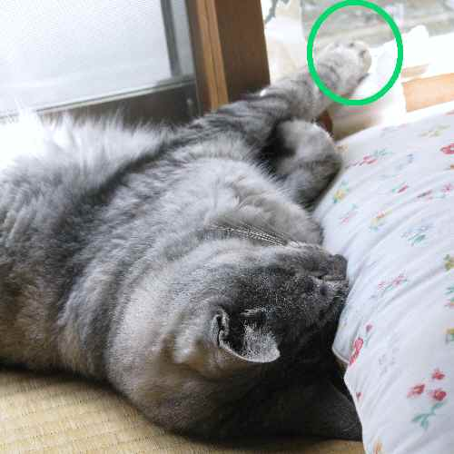 boo_20120831.jpg