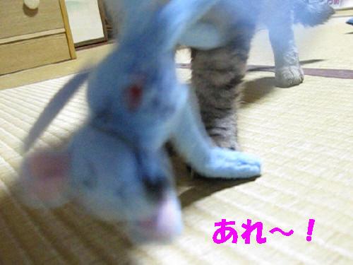 boo_201209172150.jpg
