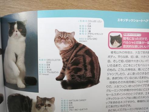 21)うじゅ掲載