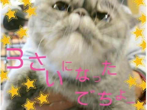 27)ぷくたん♡3さい(笑)