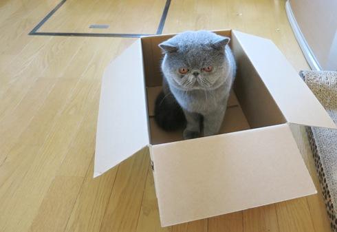 1)その箱なんですけど