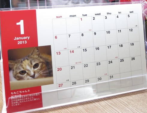 にゃんこはうすカレンダー