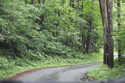 南乗鞍キャンプアイミックスへの道