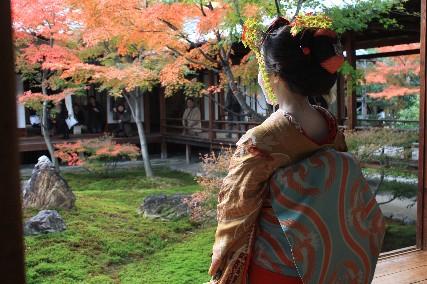 舞妓さんズーム