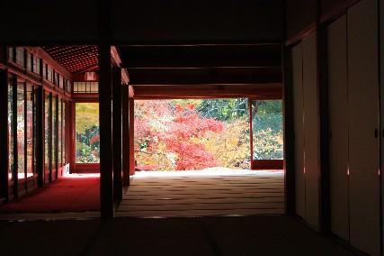 天授庵部屋の向こうの紅葉