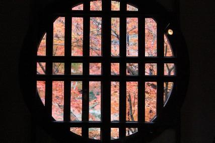 丸格子窓の紅葉