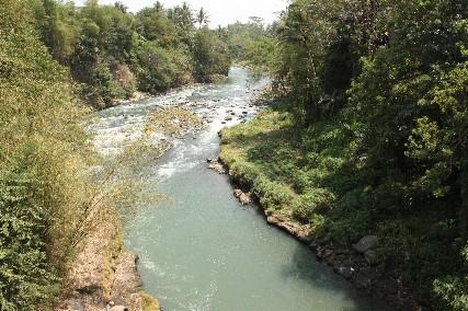 マノハラでレンタチャリ川2