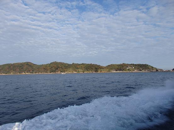 青島123