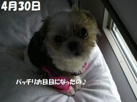 IMGP6072_5.jpg