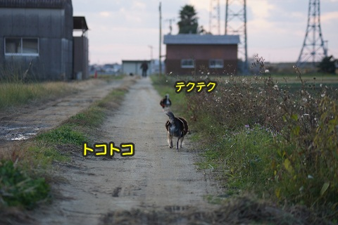DSC05542.jpg
