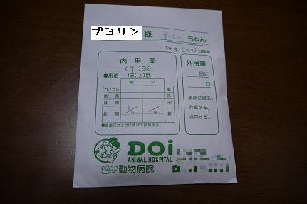 P1100673.jpg