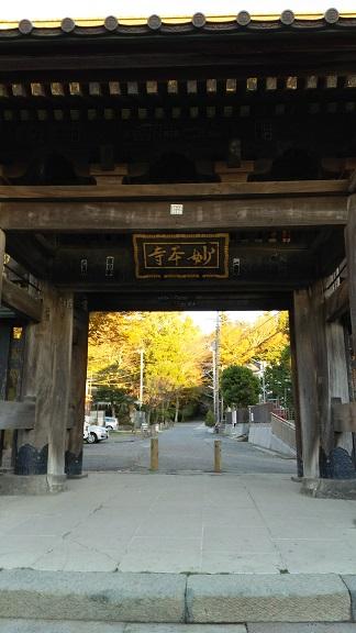 妙本寺の秋2