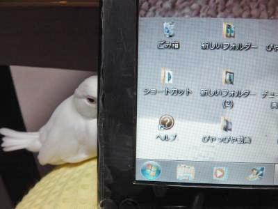 IMGA0710_convert_20120721192826.jpg