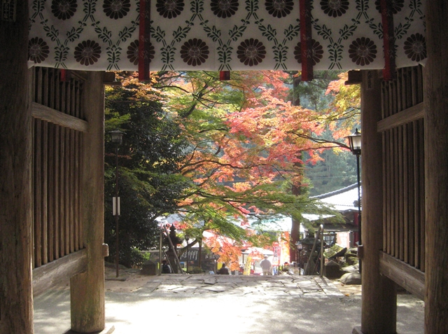 大窪寺の紅葉