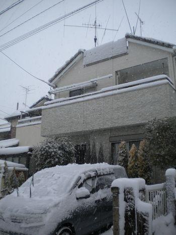 20140208_大雪