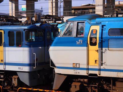 P1282351.jpg