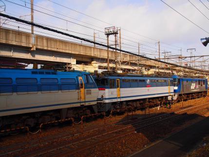P1282357.jpg