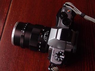 P6051369-001.jpg