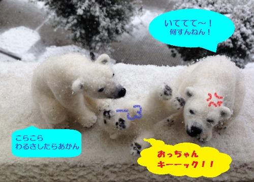 20140214_2.jpg