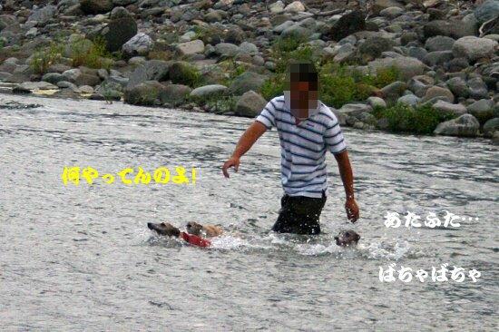 IMG_8220_201308302339153e2.jpg