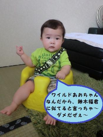 CIMG3537.jpg