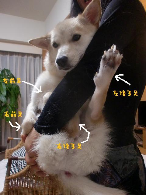 042_20120611085251.jpg