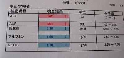 2012-08-18-01.jpg