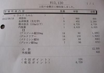 2012-08-18-02.jpg