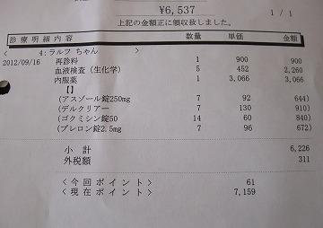 2012-09-16-21.jpg