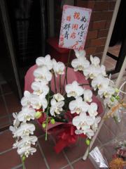 【新店】中華そば ぬんぽこ-4
