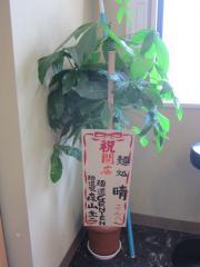 【新店】麺処 晴-4