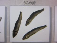 中華ソバ みなみ【四】-8