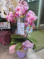 【新店】麺処 さとう-4