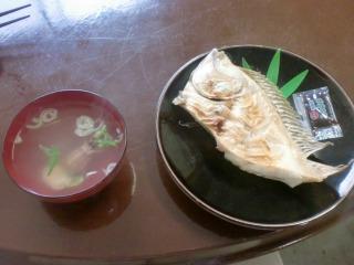 2012年06月16日_フラミンゴ・魚