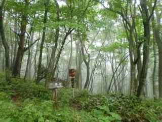 2012年07月15日_泉ヶ岳1