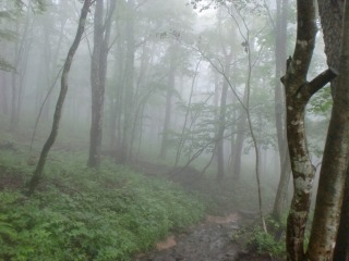2012年07月15日_泉ヶ岳4